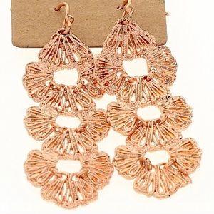 EUC Sparkling Dangle Earrings